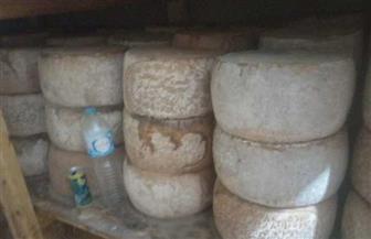 ضبط 3 أطنان و700 كيلو جبن رومي وسكر غير صالحة للاستهلاك بالعصافرة في الدقهلية | صور
