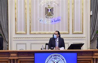 خلال اجتماع عبر الفيديو كونفرانس.. مجلس الوزراء يقف دقيقة حدادا على روح الفريق محمد العصار