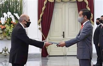 سفير مصر في جاكرتا يقدم أوراق اعتماده للرئيس الأندونيسي صور