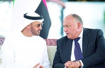 وزير الخارجية ونظيره الإماراتي يدينان تعريض حياة المدنيين في ليبيا للخطر