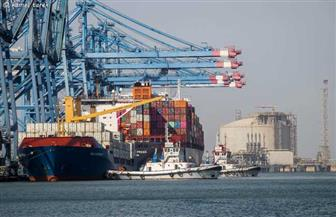 تداول 10 سفن للبضائع والحاويات بميناء دمياط