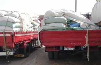 توريد 137 ألف طن من محصول القمح لصوامع وشون سوهاج| صور