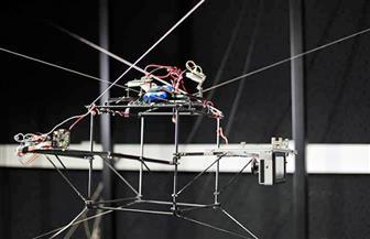 روبوت في فرنسا لتعقب الحشرات الطائرة وتصويرها