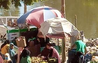 زحام في أسواق بقرى طنطا وبسيون في الغربية بعد قيام الباعة بإقامتها | صور
