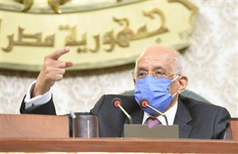 عبد العال: مجلس الشيوخ يعتمد على المعايير الراسخة التي أكدتها المحكمة الدستورية