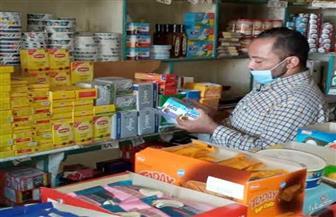 إعدام 1.5 طن أغذية متنوعة في حملة تفتيشية بالدقهلية