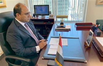 سفير مصر في كندا يستعرض الجهود المصرية لتوفير الحماية للمرأة خلال جائحة كورونا