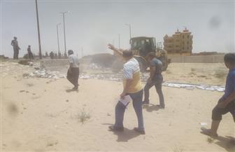إزالة 7 حالات تعد على أملاك الدولة في بئر العبد بشمال سيناء | صور