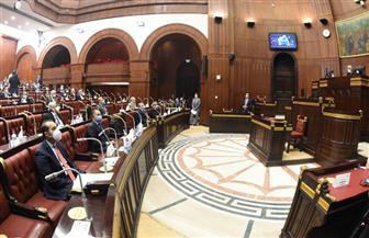 """""""العامة للبرلمان"""" تقر موازنة النواب وتوافق على 500 مليون جنيه للشيوخ"""