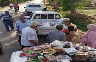انطلاق مبادرة لتوزيع وجبات طازجة على أسر العزل المنزلي في المنوفية | صور