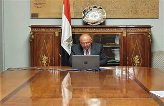 وزير الخارجية يؤكد دعم مصر المستمر للشعب اليمني الشقيق خلال مؤتمر المانحين 2020|صور