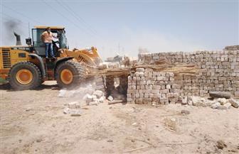 إزالة 8 حالات تعد على أملاك الدولة بكفر سعد والبطيخ بدمياط