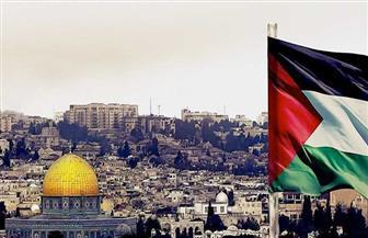 فلسطين: نخطو خطوات مهمة لإفشال مشروعات الضم الإسرائيلية