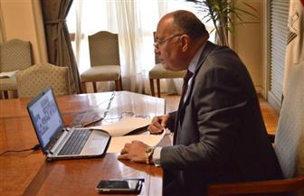 سامح شكري يشارك في مجلس جامعة الدول العربية على المستوى الوزاري | صور