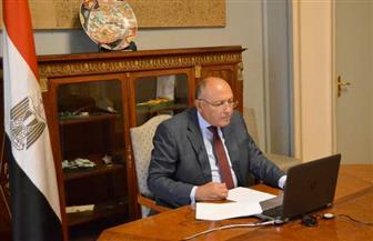 وزير الخارجية: مصر تناشد الدول العربية الشقيقة دعم تحركاتها من أجل استئناف المفاوضات حول سد النهضة