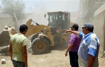 محافظ أسيوط: إزالة 15 حالة تعد على أراض زراعية وأملاك دولة بأبوتيج | صور
