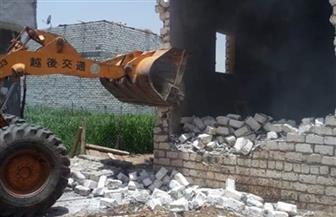 إزالة 43 حالة تعد بالبناء على الأراضي الزراعية وأملاك الدولة بالمنيا