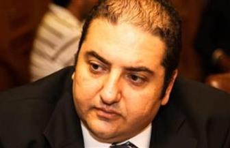 شعبة المستوردين: قرارات الحكومة بإعادة النشاط التجاري يكسر حالة الركود