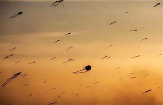 ومن الألعاب ما قتل .. ما أسباب ظاهرة الطائرات الورقية في سماء مصر؟ | صور