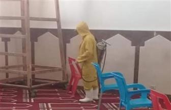 بدء  إجراءات تطهير المساجد بدهب استعدادا لفتحها السبت المقبل| صور