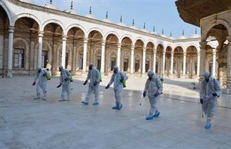 قبل أداء صلاة الجمعة.. الأوقاف تنظم حملة تطهير وتعقيم بمسجد محمد علي بالقلعة |صور