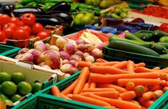 الصادرات الزراعية تتجاهل كورونا تقتحم 11 سوقًا جديدًا العام الحالي