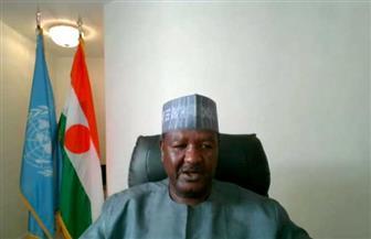مجلس الأمن.. ممثل النيجر: الولايات المتحدة والاتحاد الإفريقى يعملان من أجل التوصل لحل لملف سد النهضة