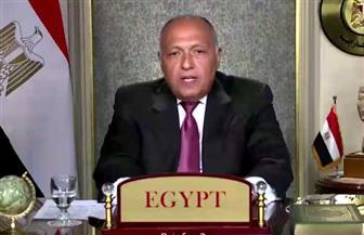 اليوم.. وزير الخارجية يشارك في اجتماع رباعي بشأن القضية الفلسطينية في الأردن