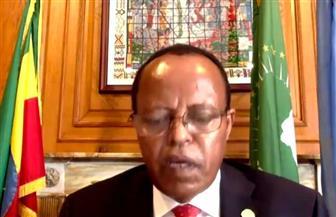 مندوب إثيوبيا بمجلس الأمن: نؤمن بحاجة مصر والسودان للمياه
