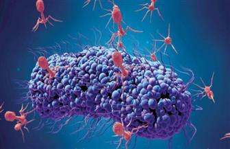 علماء: 1.7 مليون نوع من الفيروسات يمكن أن يصيبوا البشر مستقبلا
