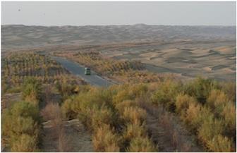 طريق تريم...مشروع وهب الحياة لصحراء تاكماليكان في شينجيانغ