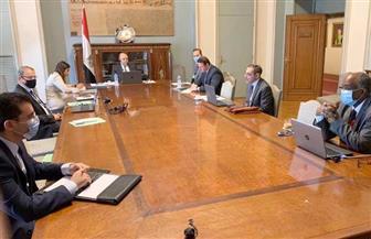 ننشر البيان الختامى لأعمال لجنة المشاورات السياسية بين دولة الإمارات ومصر| صور