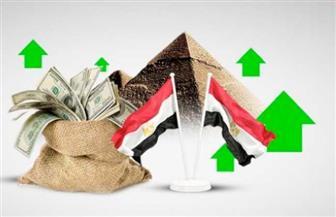 """""""التخطيط"""": المؤسسات الدولية تتوقع استمرار النمو الإيجابي في مصر رغم أزمة """"كورونا"""""""