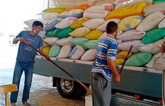 محافظ البحيرة: توريد 316 ألف طن قمح لشون وصوامع المحافظة