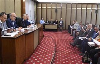 """تشريعية النواب توافق على عدد أعضاء البرلمان المقبل """"٥٦٨ عضوا"""""""