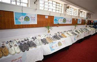 6 مبادرات ومشروعات للأسر الأولى بالرعاية من «صندوق تحيا مصر» خلال 5 أعوام | صور