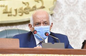 عبد العال يشكل لجنة لمراجعة الاعتراضات على نسبة المرأة في مجلس الشيوخ
