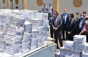 «شباب الأحزاب والسياسيين» تختتم حملة «الوعي أمان» في 19 محافظة