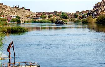 «جزيرة سهيل» تحكى كيف عاد النيل يجري؟   صور