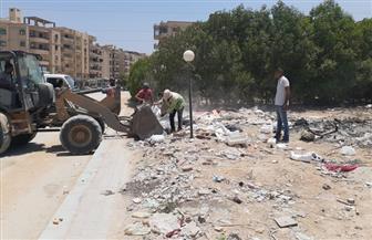 آلية جديدة لتكثيف أعمال النظافة في منطقة هضبة الأهرام | صور
