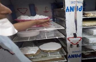 إعدام 2 طن من المواد الغذائية لتغير خواصها في حملة بالدقهلية |صور