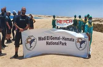 تنظيف شعاب شرم وساحل الفقيري بمحمية وادي الجمال بمرسى علم | صور