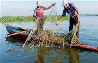 النبش فى الماء.. «معناوى عروس» حياته كلها على مركب صيد | صور