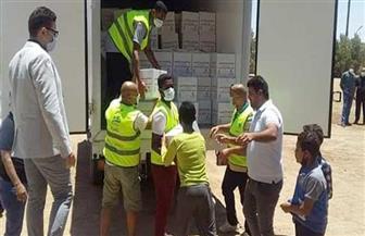 توزيع 300 كرتونة مواد تموينية لأهالي قرية الزعفرانة دعما من «تحيا مصر» | صور