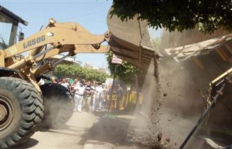 استرداد 21 فدان أملاك دولة بالسادات وإزالة  178 حالة تعد منذ انطلاق الموجة 16 بالمنوفية |صور