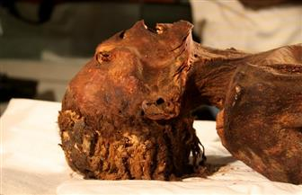 """بعد 3 آلاف عام على موت الأميرة المصرية.. علماء يكشفون لغز وفاة """"المرأة الصارخة""""   صور"""