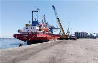مواني بورسعيد: تداول 28 سفينة وتفريغ 2680 طن رخام وشحن 4700 طن صودا كاوية | صور