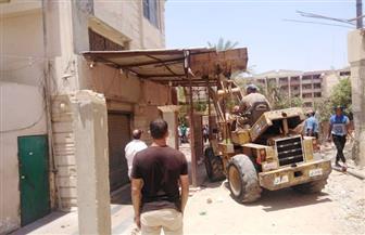 جهازا مدينتي الشيخ زايد والسادات ينفذان حملات لضبط المخالفات ورفع الإشغالات| صور