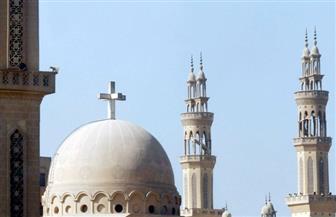 """""""العليا للأخوة الإنسانية"""": دور العبادة ينبغي أن تبقي دائما رسالة سلام ومحبة للجميع"""
