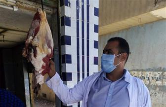 حملة بيطرية للتفتيش على محال الجزارة في حي شبرا